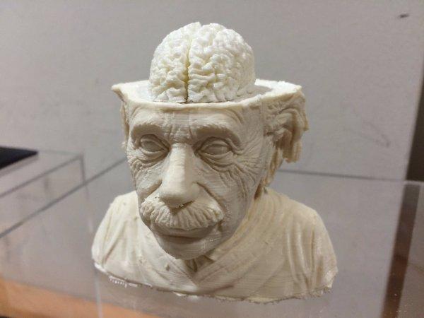 学生作品爱因斯坦创意雕像