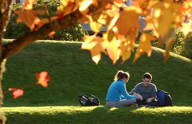 申请澳洲留学签证的渠道介绍