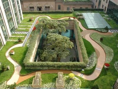 践行绿色梦想 学生获录澳洲八大园艺专业