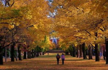 2014年澳洲留学经济学最好的大学有哪些