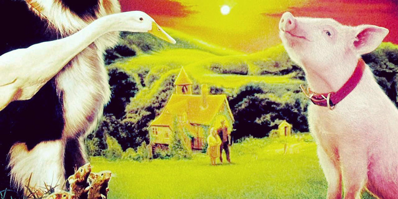 澳洲留学必看的澳洲经典电影 你看过几部?