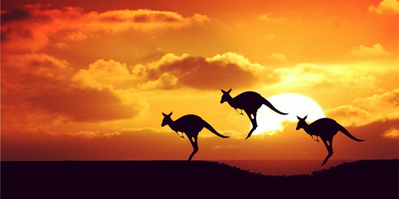 中国留学生融入澳洲的三大挑战 你能破吗?