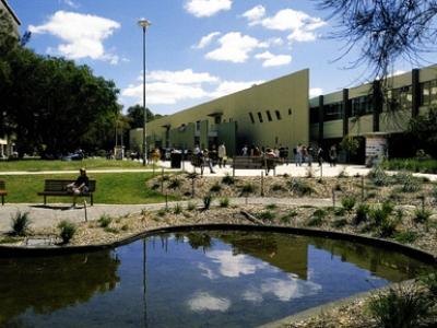 蒙纳士大学排名