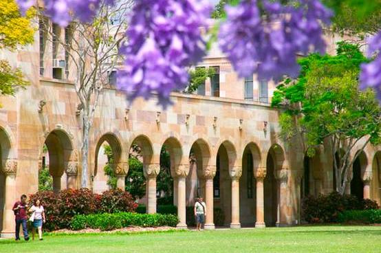 西澳大学商学院