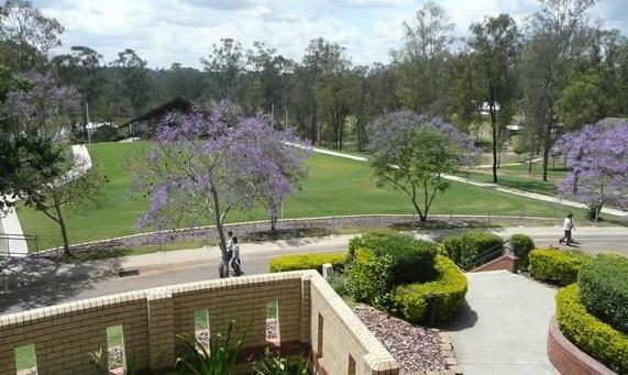 南昆士兰大学优势