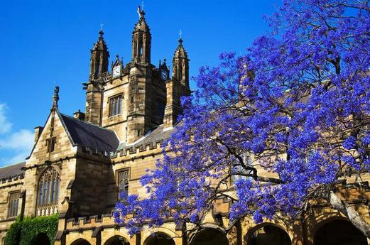 详细解读澳洲八大对研究生申请条件要求