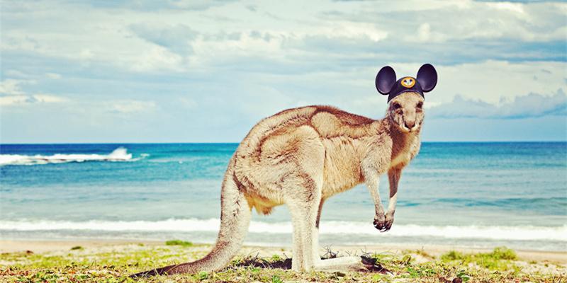 澳洲生活攻略,澳洲行前攻略,澳洲homestay