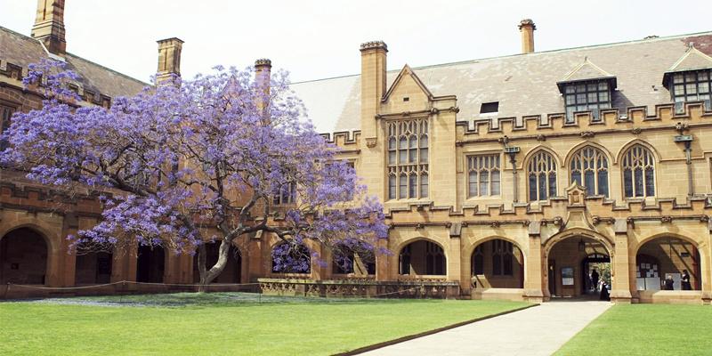 悉尼租房区,悉尼留学租房,悉尼租房价格