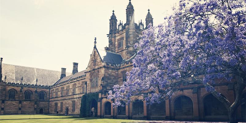 悉尼大学,澳洲大学申请条件