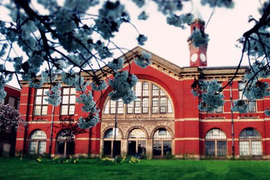 英国大学兽医学专业排名