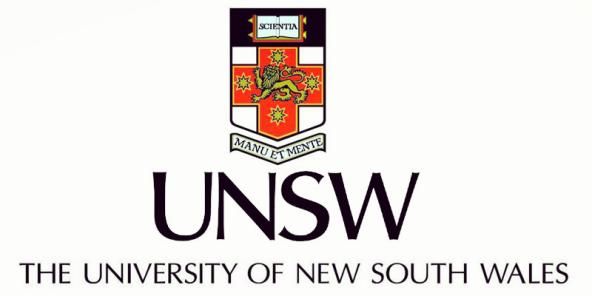 2017年新南威尔士大学Conditional-CoE申请政策