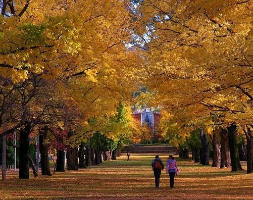 澳洲圣母大学地理位置及人文环境详解