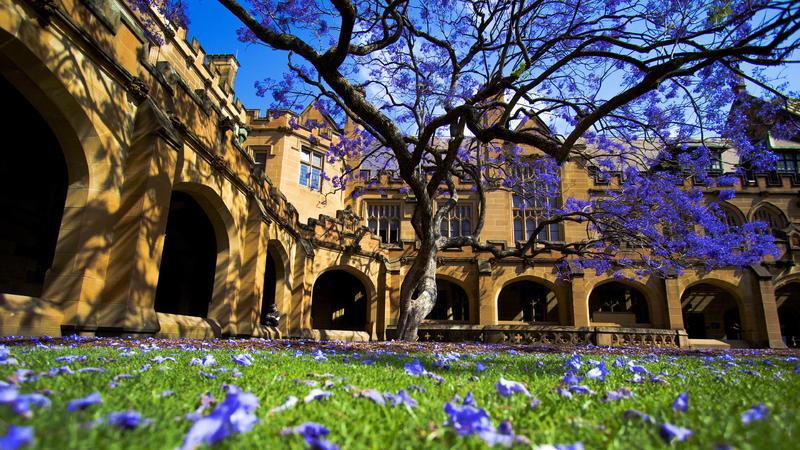 澳洲建筑学专业大学排名