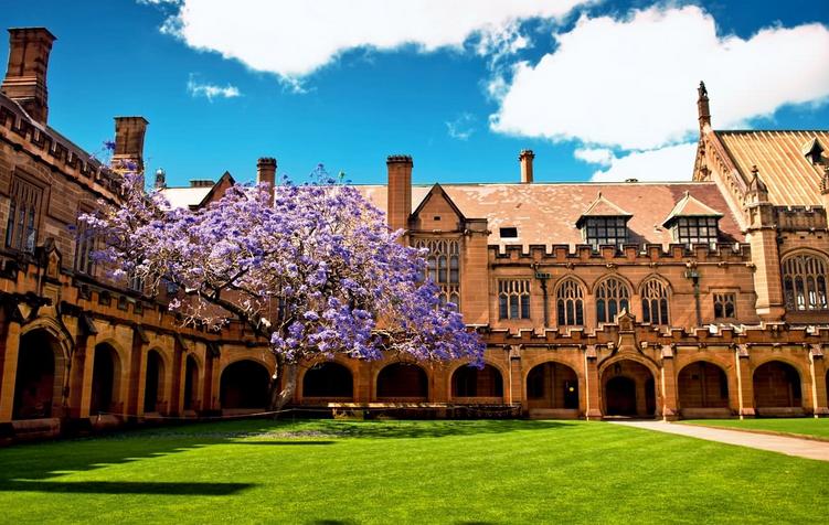 悉尼大学国际贸易信息揭秘    入学就业信息申请必知