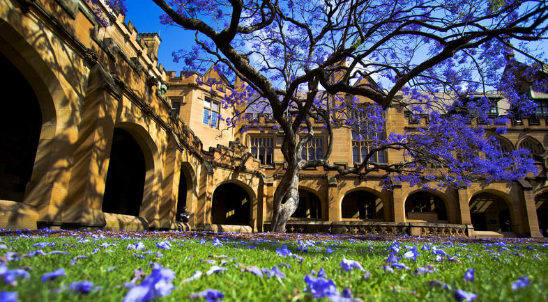 澳洲国立大学本地排名高不高?常年稳居澳洲大学第一名