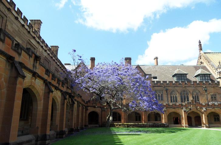 澳洲大学移民信息深度解读以及澳洲名校和移民专业推荐