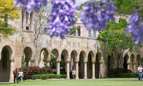 西悉尼大学学费