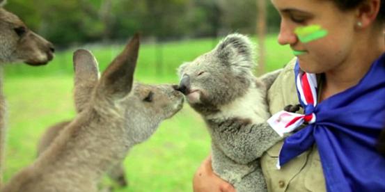澳洲留学时间规划,澳洲留学规划