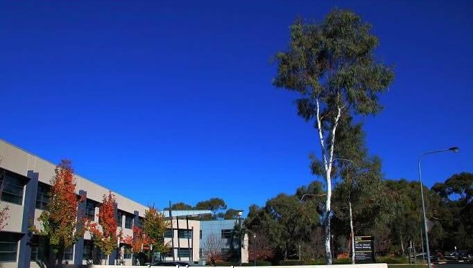 澳大利亚国立大学会计要求介绍 赴澳留学热门专业不容错过