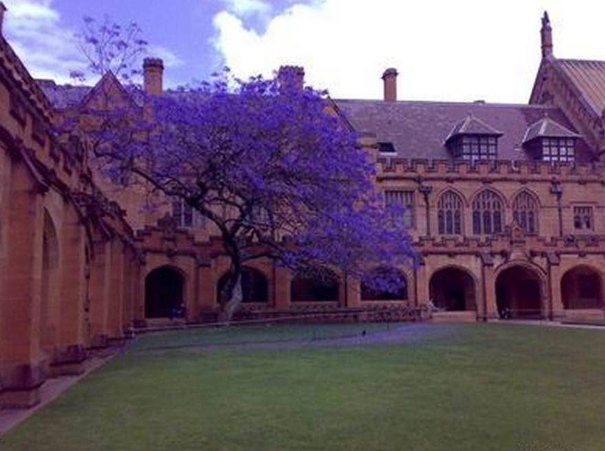 澳洲大学数量详细介绍  数量虽然不多但是教育水平却是顶尖