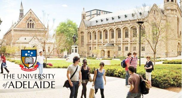 阿德莱德大学,阿德莱德大学offer,ConditionalCoe