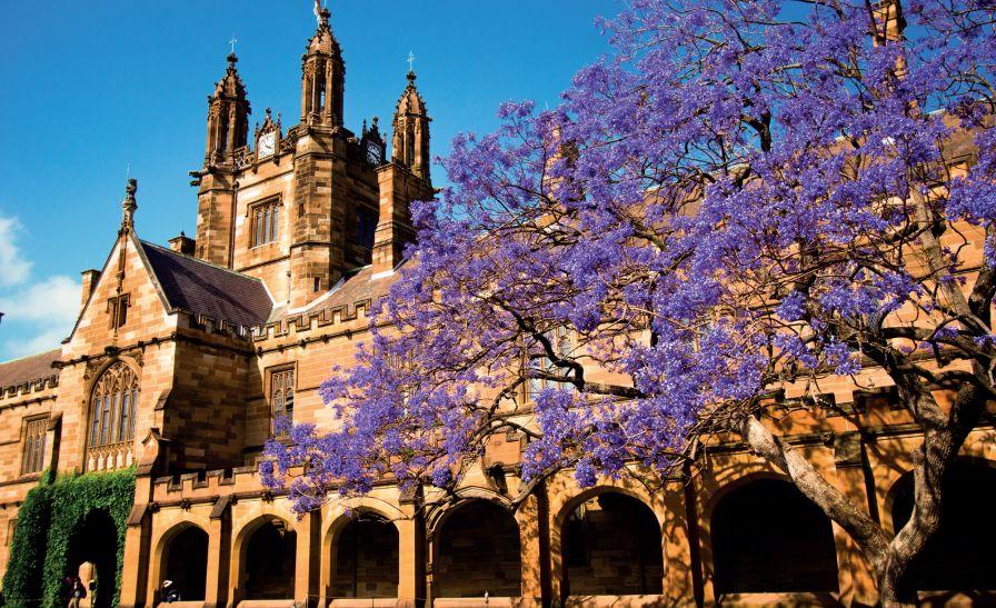 澳洲悉尼大学学费又又又涨了?【附悉尼大学预科课程介绍】