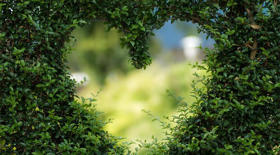 这3个澳洲景点,为啥浪漫到徐若瑄、周杰伦等明星都去度蜜月?