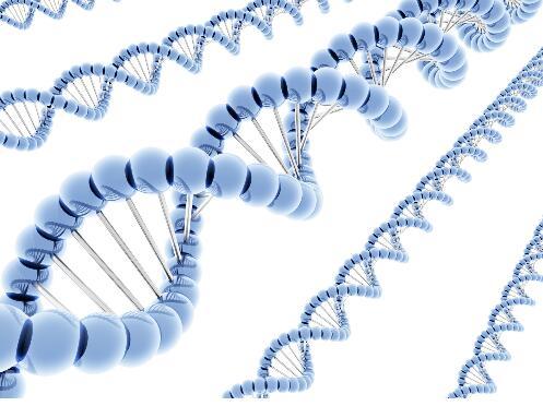 澳大利亚生物医学工程专业院校排名