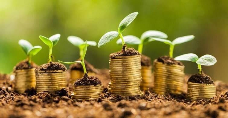 西澳大学金融专业研究生职业发展方向