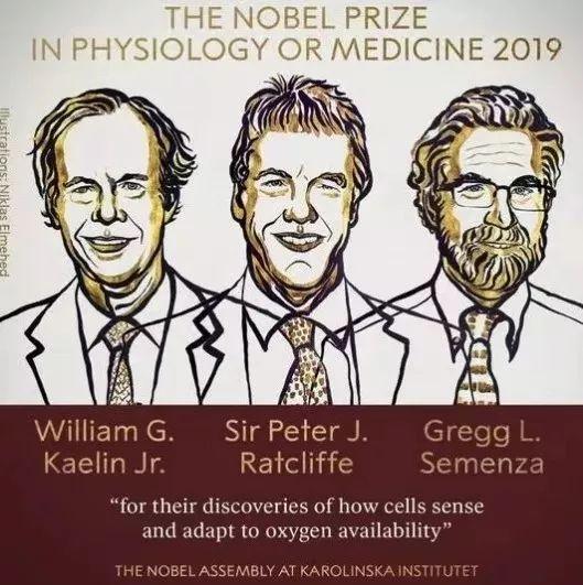科研实力大PK!澳洲的哪些大学盛产诺贝尔奖得主?
