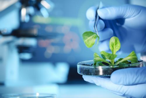 迪肯大学生物技术学硕士申请:需要具备相关专业背景