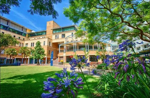 澳洲新南威尔士大学的金融硕士:不要工作经验